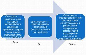 Приведите примеры статей конституции рф содержащие гипотезу