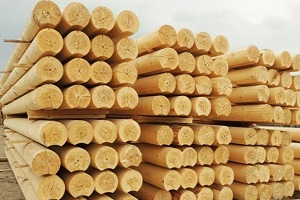 Кто имеет право на лес для строительства